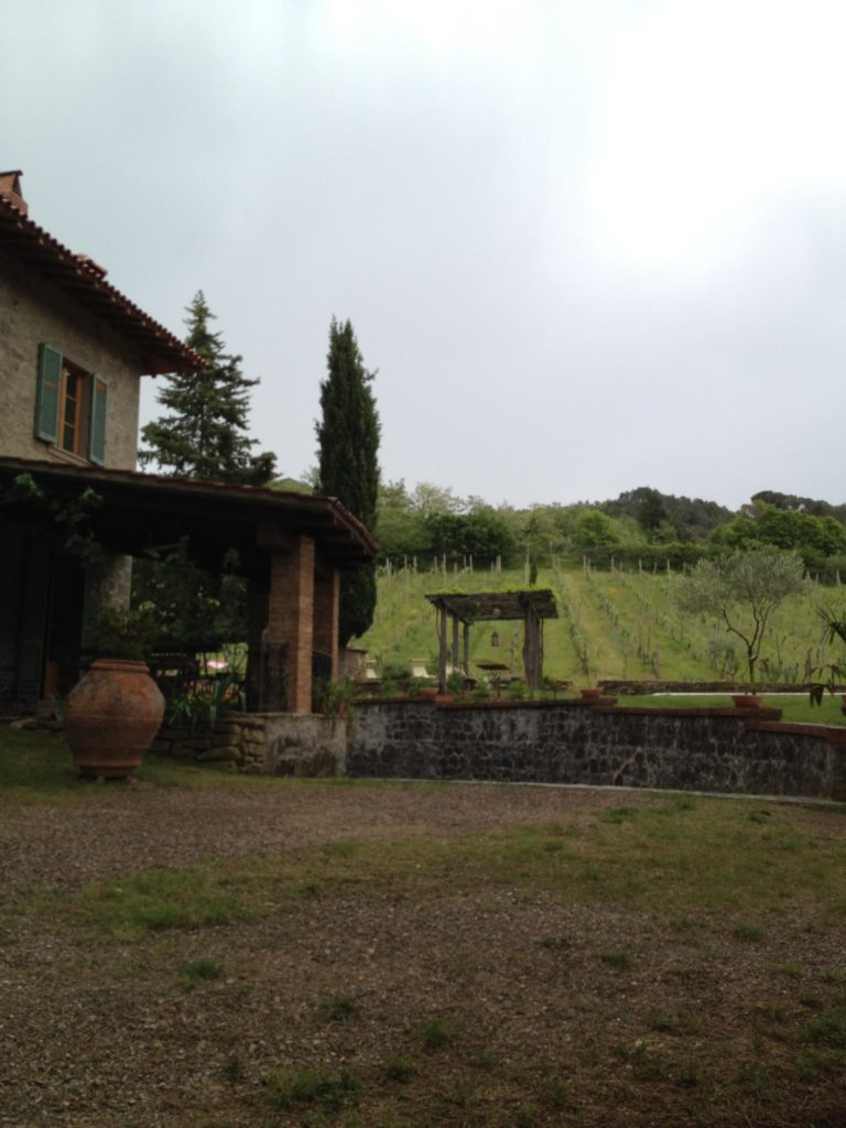 The backyard of our Villa in Subbiano.